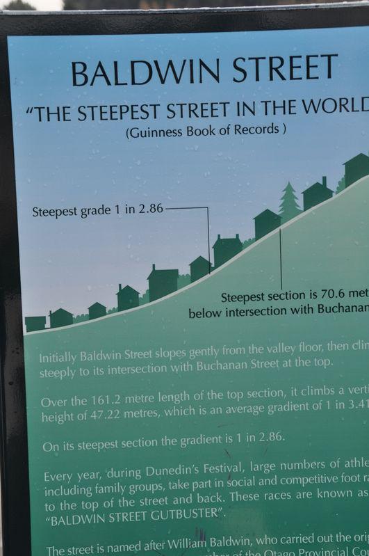Data on Baldwin Street